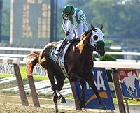 Point Given captures the 2001 Belmont Stakes by 12 lengths