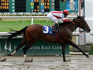 Populist Politics Back to Turf in Dixie Poker Ace