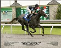 Positive Split 2