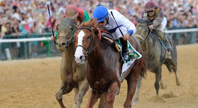 Shackleford takes the 2011 Preakness over Animal Kingdom