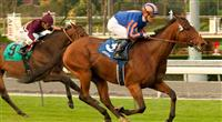 Qaraaba wins 2012 Robert Frankel Stakes