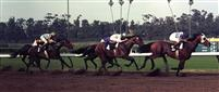 Quack winning the 1973 Californian at Hollywood Park