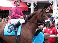Andromeda's Hero before the G1 Woodward Stakes (2006) at Saratoga with Fernando Jara in irons.