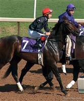 Storm Flag Flying with Jerry Bailey 2004 Breeders Cup