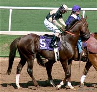 Domestic Dispute, Kerwin John, Steve Queen, Breeders Cup