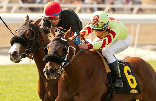 Red Outlaw wins 2014 Baffle Stakes.