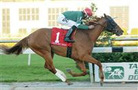 Ring Weekend upsets Tampa Bay Derby in front-running fashion