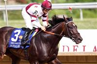 /horse/royal Delta