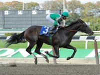 Royal Delta breaks maiden at Belmont Park (10-30-10).