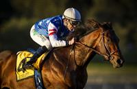 Breeders' Cup Dirt Mile 2016: The Top 10