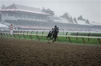 Scenes from a Sunday at Saratoga