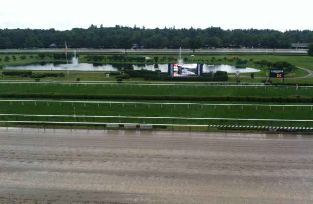 Saratoga Mud 615 X 400