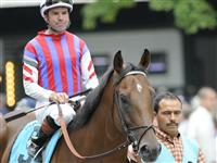 Sette E Mezzo and Jockey Kent Desormeaux before running third in the 2009 Bernard Baruch