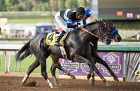 Shared Belief Prepares for the Malibu Stakes