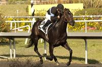 Shared Belief Stretches Out in CashCall Futurity
