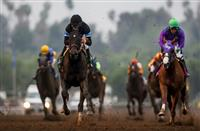 Shared Belief too Big for this Big Cap