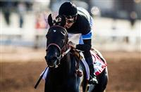 Game On Dude and Shared Belief Top Pacific Classic