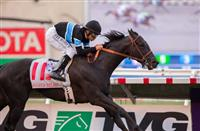 Shared Belief takes the next step in the TVG Pacific Classic