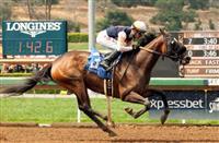 D'Amato and Baze dominate California Gold Rush Day at Santa Anita