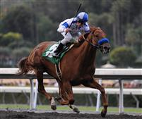 Sidney's Candy takes the 2010 San Felipe