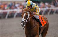 AUG 3,2014:Skyway,ridden by Stewart Elliot,wins the Best Pal Stakes at Del Mar in Del Mar,CA. Kazushi Ishida/ESW/CSM