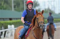 Sloan Avenue gallops at Gulfstream (2-3-15).