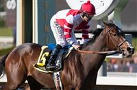 Santa Anita Action with Mor Spirit and Songbird in Photos