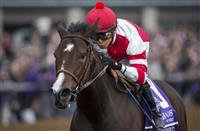 Songbird Headlines the 2016 Coaching Club American Oaks
