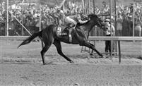 Spend A Buck wins the 1985 Derby