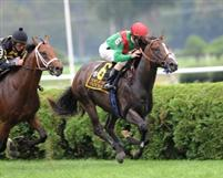 State of Play winning the 2011 Grade 2 With Anticipation Stakes at Saratoga.