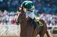 Competitive Field of 14 for the 2015 Kentucky Oaks