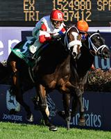 /stakes/Breeders Cup Juvenile Fillies Turf