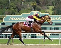 Storm Fighter breaking his maiden by 5+ lengths with Gary Stevens on 3/2/13