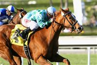Striking Dancer wins the 2010 La Canada Stakes at Santa Anita