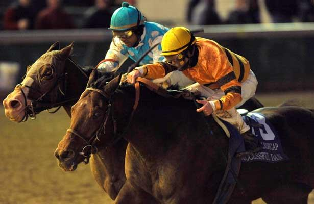 November 26, 2010: Giant Oak and Shawn Bridgmohan (blue/wht) get the win in the Clark Handicap after Successful Dan and Julien Leparoux (yellow) were taken down for interference in the stretch drive, at Churchill Downs in Louisville, Kentucky.
