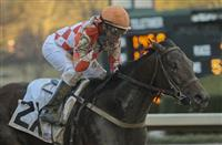 Handicapping the Rebel Stakes