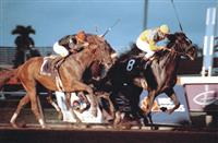 Sunday Silence holds on to capture the 1989 Breeders' Cup Classic over Easy Goer