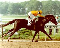 1984 Belmont Stakes