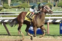 Sweet Loretta romps home in the Schuylerville