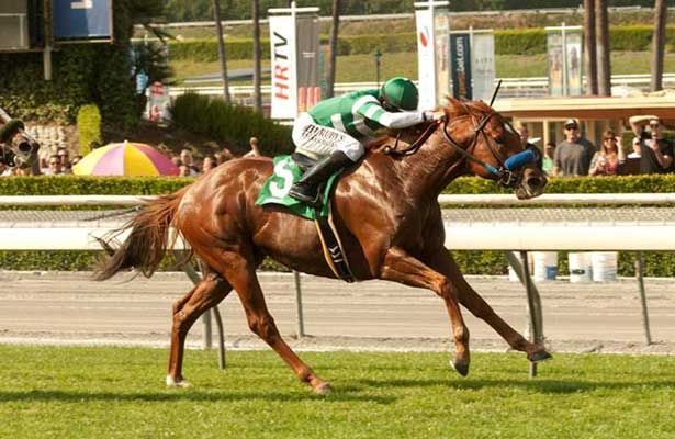 Sweet Swap wins 2014 San Simeon.