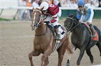 Candy Boy, Tapiture, and Vicar's In Trouble in West Virginia Derby