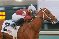 Kentucky Derby 2014: Handicapping the Rebel