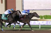 Texas Chrome brave up the rail for Oklahoma Derby win