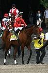 /horse/Thank U Philippe