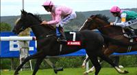 The Fugue Nassau