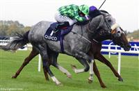 The Grey Gatsby over Australia: Race of the Year?