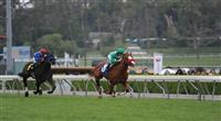 April 11, 2010.Unzip Me riden by Joseph Talamo, wins The Las Cienegas Handicap at Santa Anita Park, Arcadia, CA