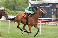 Geroux cleans up on Arlington Million Preview Day