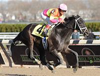 Edgar Prado steers Tizahit to victory in the Demoiselle Stakes (gr.II) November 28th, 2009 at Aqueduct Racecourse.