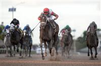 Tommy Macho sweeps to victory in the Hal's Hope